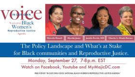 In Our Own Voice - The Policy Landscape: What's at Stake.